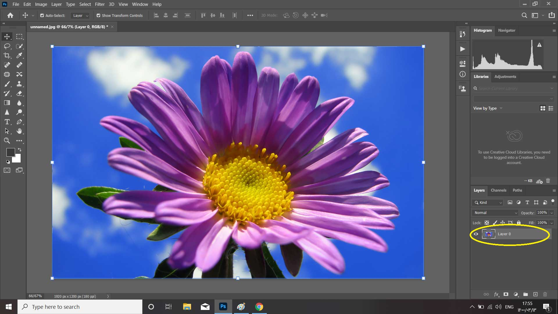 رنگی کردن قسمتی از تصویر