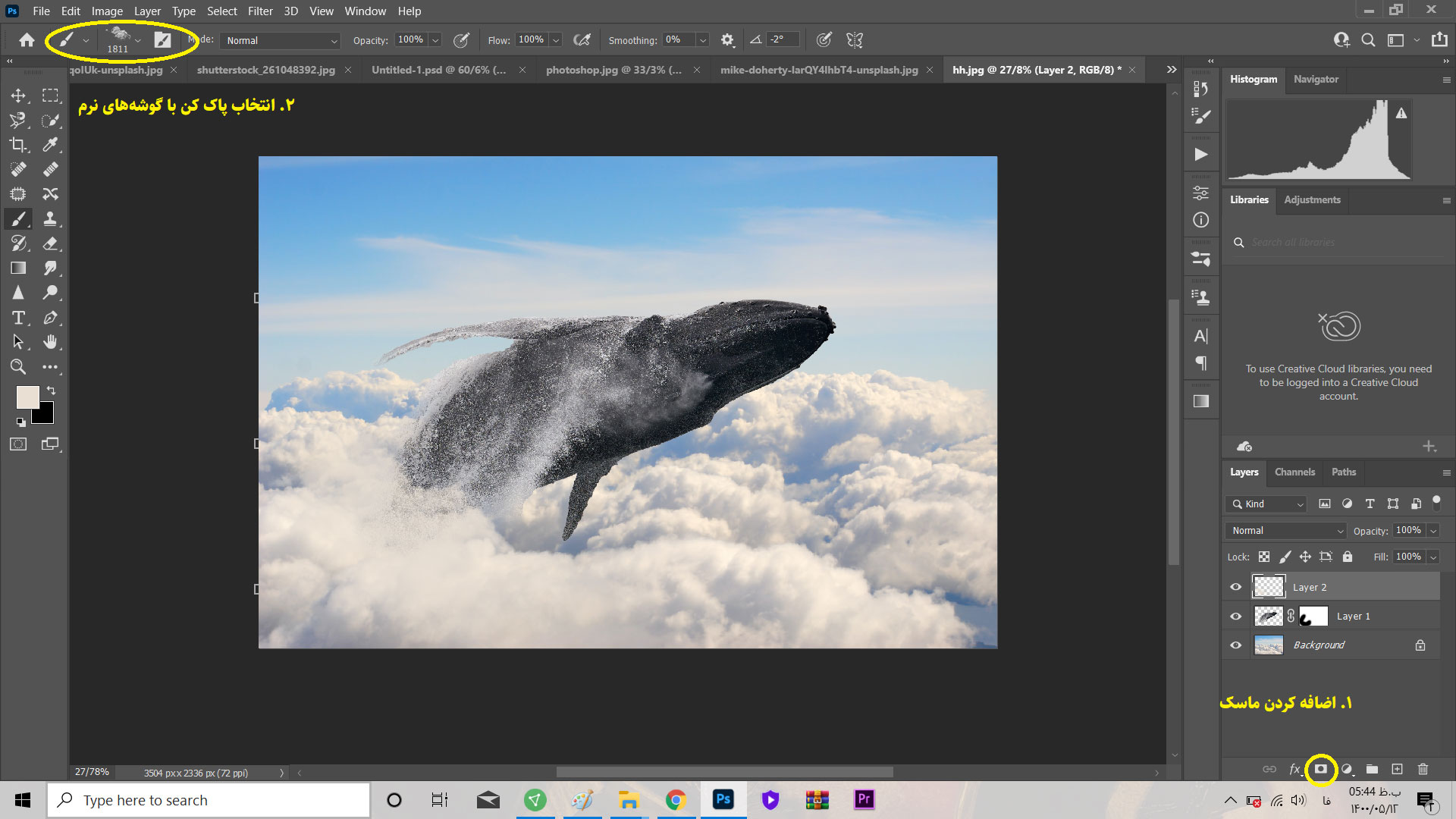پرواز نهنگها